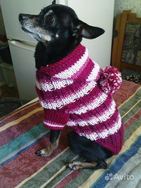 вязаная одежда для маленьких собак и кошек 1. вязаная одежда для мале