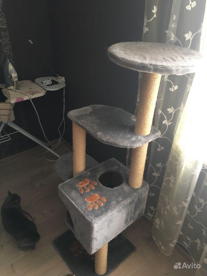 Домик для кошки. Московская область, Коломна