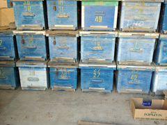 Ящики для пчел корпусные
