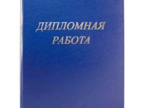 Копи Сервис Профиль пользователя на avito Папки дипломная работа и дипломный проект