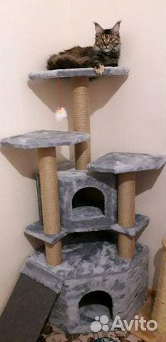 Домики для кошек от производителя купить 2
