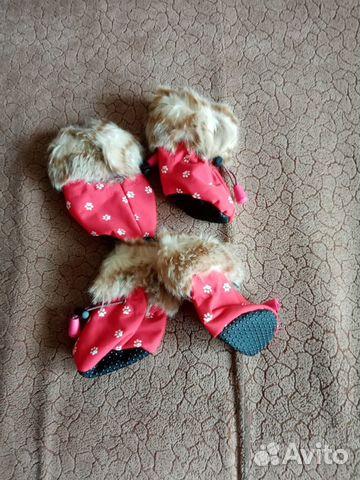 Обувь для маленьких собак  89241387514 купить 1