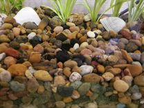 Грунт для аквариума 3кг (цена за все 3 кг)